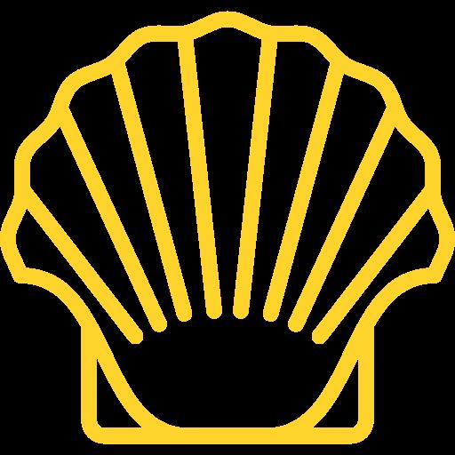 Ostréiculteur CARIOU Ronan, producteur d'huîtres et coquillages à Combrit 05